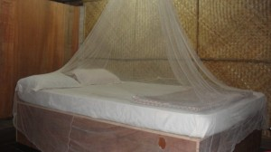 indian-mosquito-net