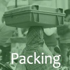 packing-list-india
