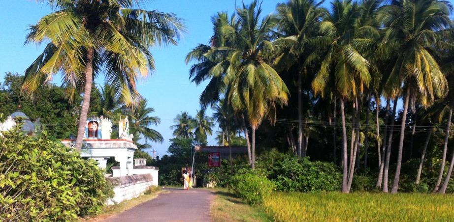 back-roads-south-india