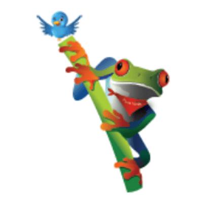 Javi the Frog's Travel Blog