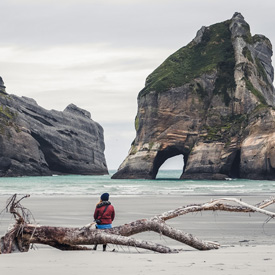 New-Zealand-Shore
