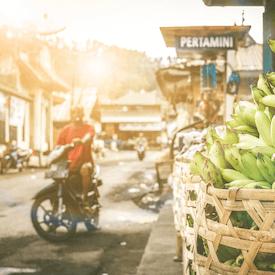 Bali Motorbike
