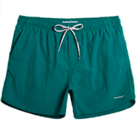 Teal Swimming Trunks