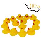 Make a Duck Pond
