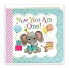 Birthday book for 1 yr  old girl