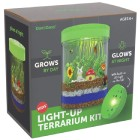 Light-Up Terrarium Kit