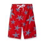 Quick-Starfish