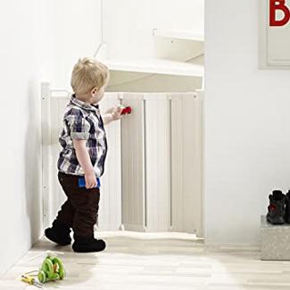 BabyDan Retractable Baby Gate