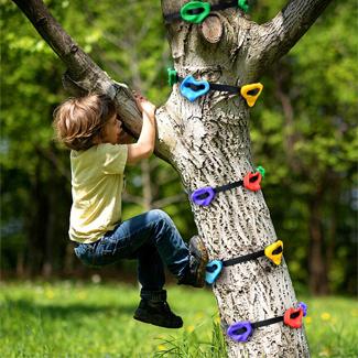 Ninja Tree Climber