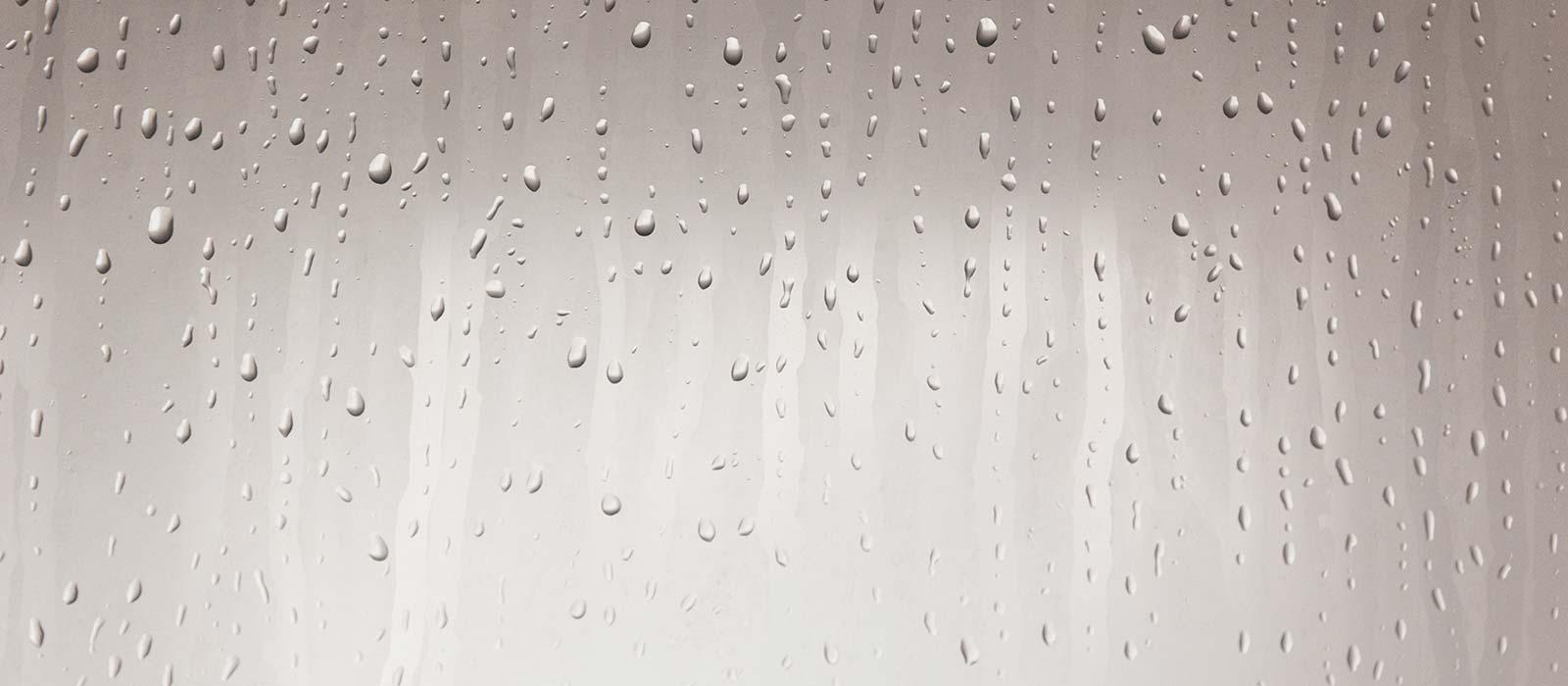 foggy shower - speaker