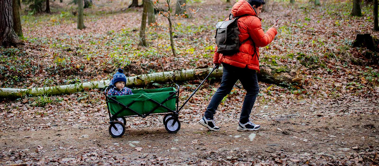 father pulling toddler in wagon