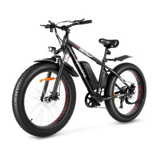 Spedrid Fat Tire Electric Bike