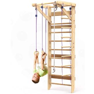Swedish Climbing Wall and Ladder