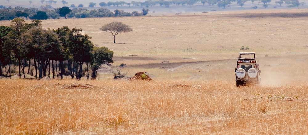 Jeep-driving through plains of Tanzania
