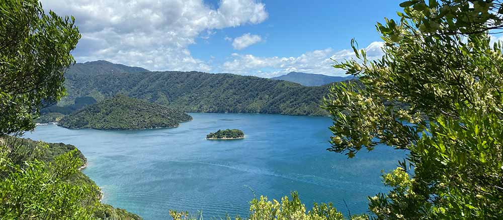 Overlook view of lake in New Zealand