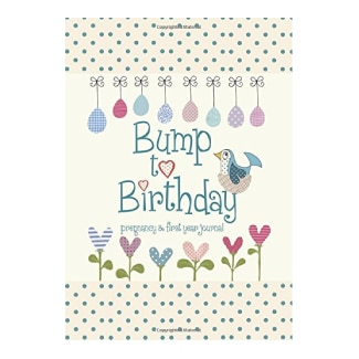 Bump to Birthday, Pregnancy & First Year Baby Journal