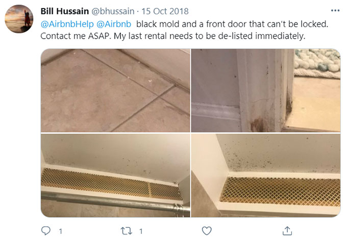 Airbnb Unsanitary Condition Mold Mildew Green Pool