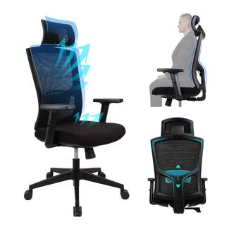Ergonomic Office Chair- Ergousit